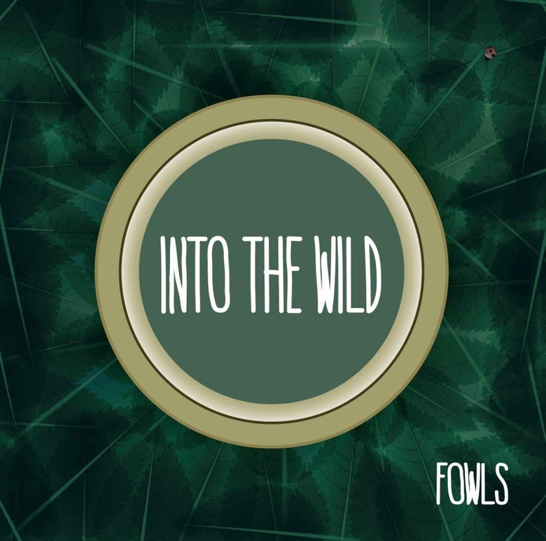 "Image of Fowls - Into the Wild - 12"" LP w/free digital download"