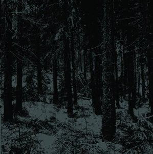 Image of MOLOCH - Abstrakter Wald CD