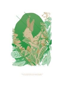 Image of Sloth (A4 Riso Print)