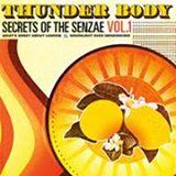Image of Thunder Body-What's Sweet About Lemons Single