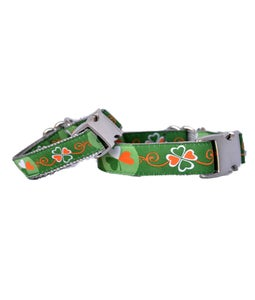 Image of Shamrock -  Dog Collar in the category  on Uncommon Paws.