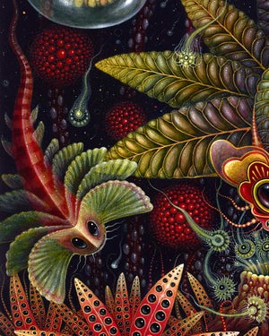 """Image of """"STAR CREATURES"""", 20 x 24"""" Signed Open Edition Print"""