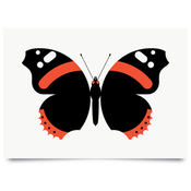 Image of Red Admiral print