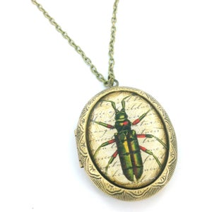 Image of Vintage Style Beatle Entomology Locket Necklace