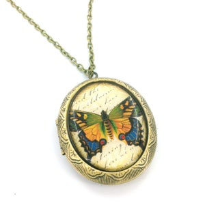 Image of Vintage Style Butterfly Entomology Locket Necklace  GYB