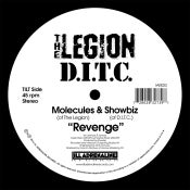 "Image of Revenge 7"" (black vinyl)"