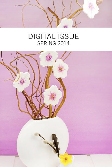 Image of Spring 2014 Digital