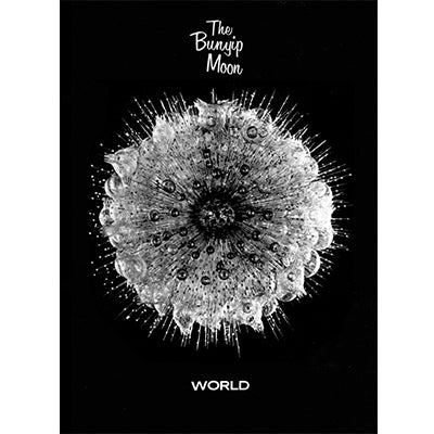 Image of The Bunyip Moon > World