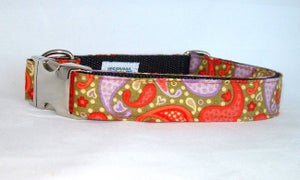 Image of Playful Paisley - Dog Collar in the category  on Uncommon Paws.