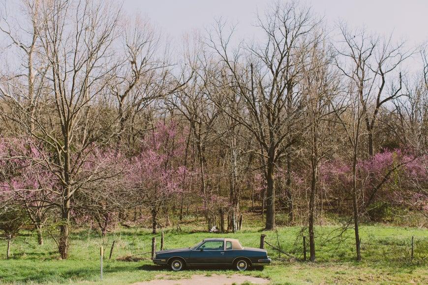 Image of Arkansas No. 1