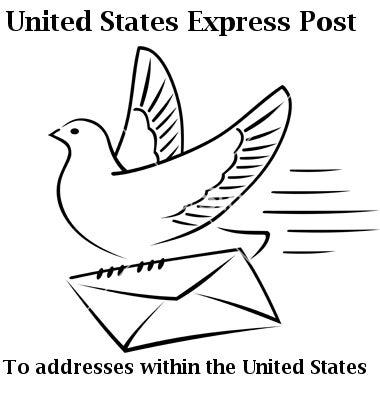 Image of United States Express Shipping Upgrade