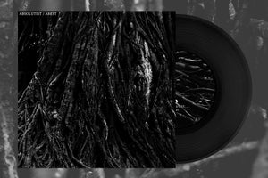 Image of [DISTRO] Absolutist/Abest - Split 7""