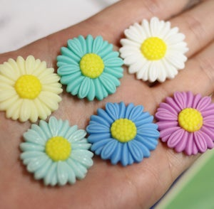 "Image of Large Daisy Plugs (sizes 3/4-1"")"