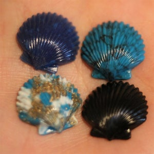 Image of Seashell Plugs (sizes 2g-9/16)