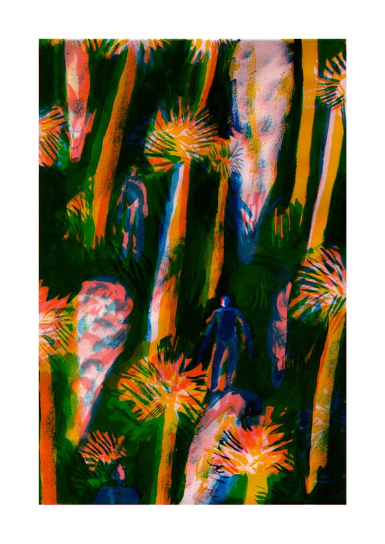 Image of SMOKE TREES