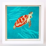 Image of Turtle in Seaweed