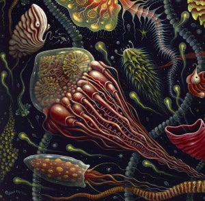 """Image of """"JELLIES"""" 20 x 20"""" Signed Open Edition"""