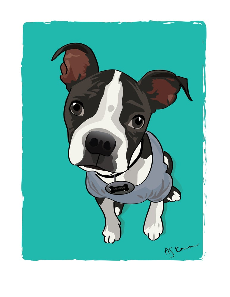 Image of Custom Pet Illustrations