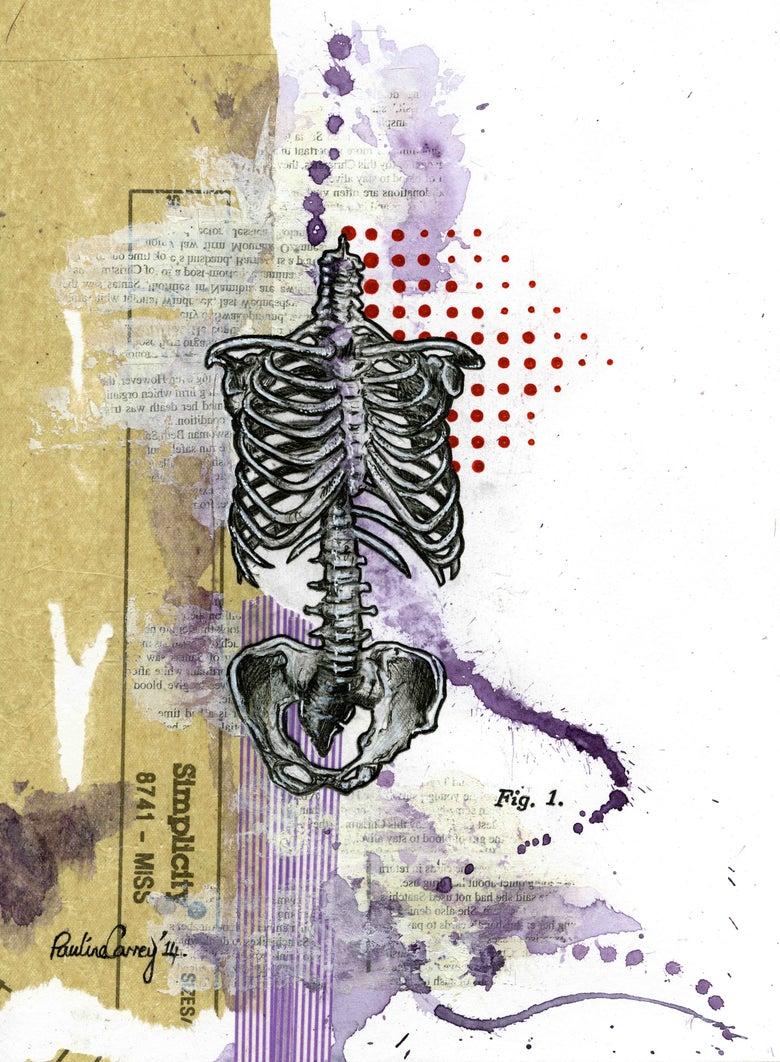 Image of Pauline Carney Old Bones Fig.1