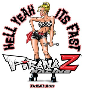 Image of FAST GIRL STICKER
