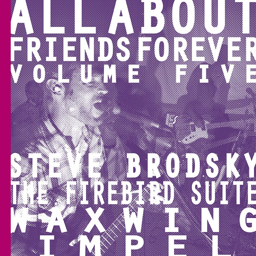 """Image of ALL ABOUT FRIENDS FOREVER VOLUME FIVE 7"""" w/zine"""