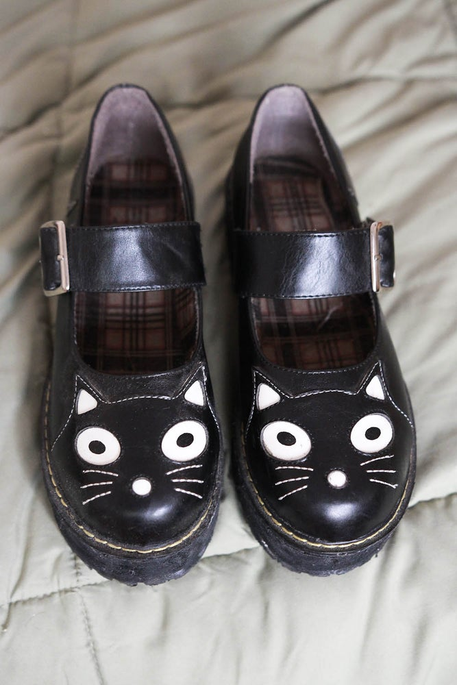 Image of kitty creepers