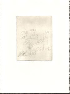 Image of 7 of 7 series - limited edition etching #7