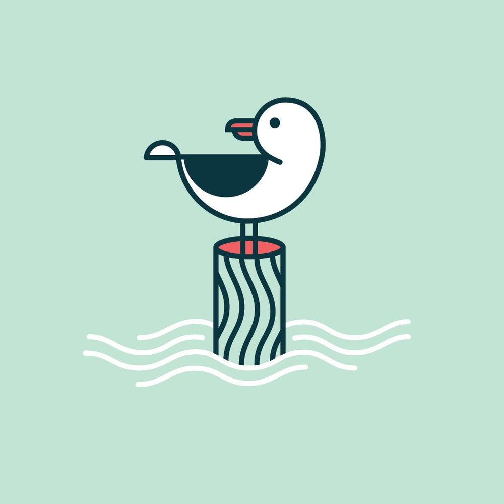 Image of Gull