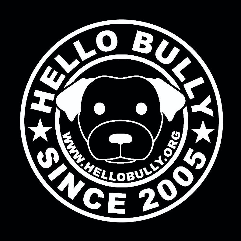 Image of HELLO BULLY SINCE 2005 LOGO TEE