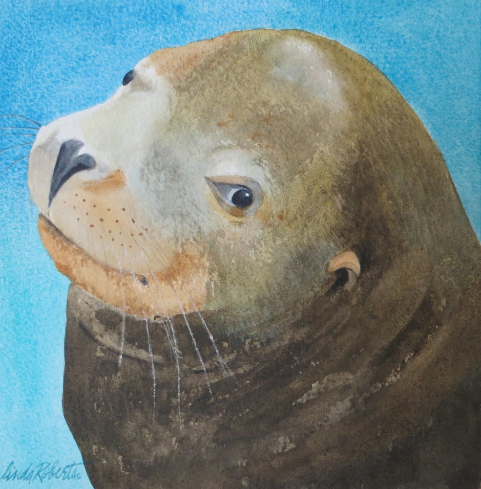 "Image of ""Sea Lion"" original watercolor"