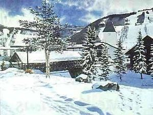 """Image of """"Vail's Covered Bridge"""""""