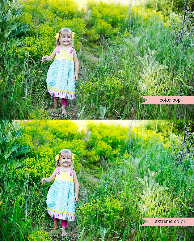 Image of Color Action Set for Photoshop