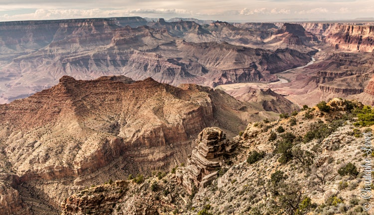 Image of The Canyon