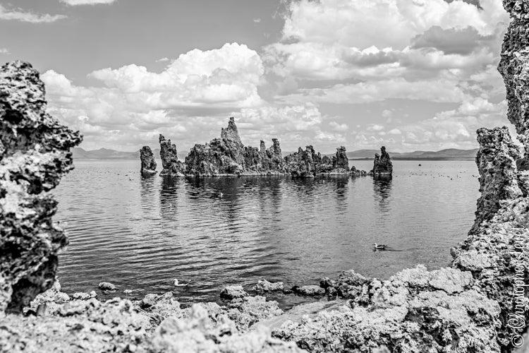 Image of The Lake