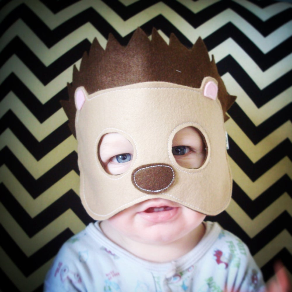Image of Hedgehog Mask