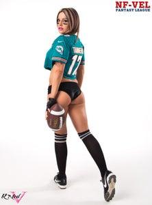 Image of Velvet Sky Miami Dolphins Fantasy Football 18x24 poster