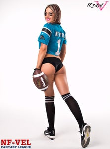 Image of Velvet Sky Carolina Panthers Fantasy Football 18x24 poster