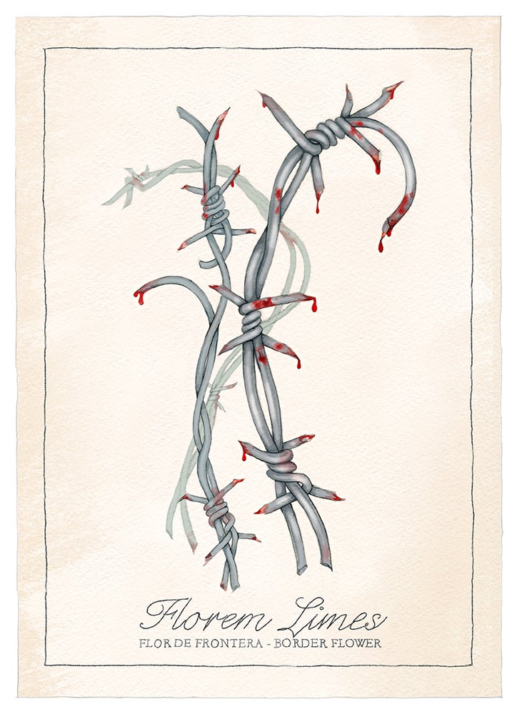 Image of Border Flower / Flor de frontera