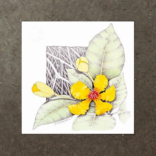 Image of Dillenia Alata - Art Print