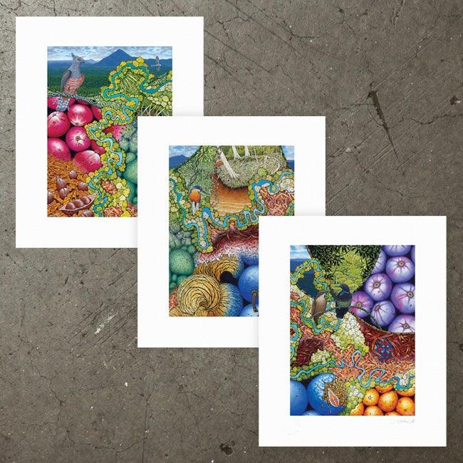 Image of Flaggy Creek - Triptych - Art Print