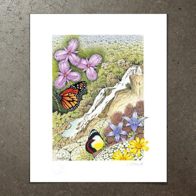 Image of Davies Creek Falls - Art Print