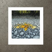 Image of Low Tide - Art Print