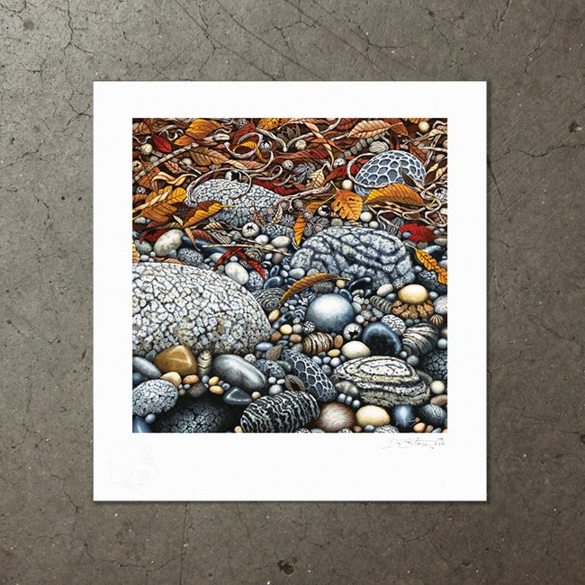 Image of Tidal Collection - Art Print