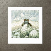 Image of Green-Eeyed Tree Frog - Art Print