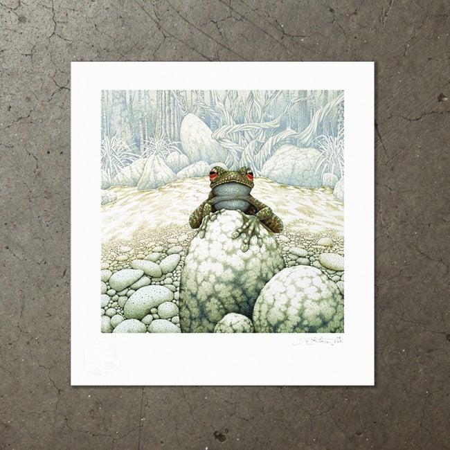 Image of Green-Eeyed Tree Frog - Art Print