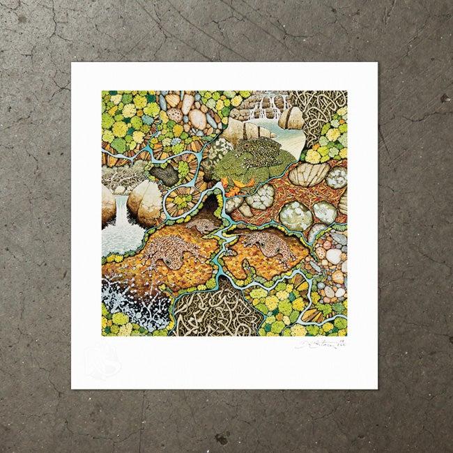 Image of Davies Creek Study - Art Print