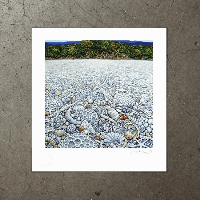 Image of Coral Beach - Art Print
