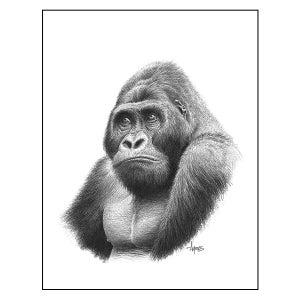 """Image of """"Mountain Gorilla"""" Print"""