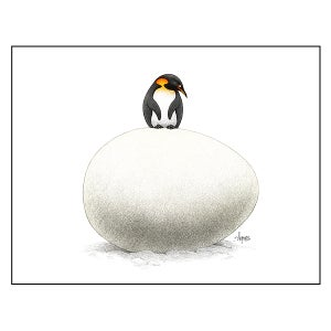 "Image of ""Waiting"" Penguin Print"