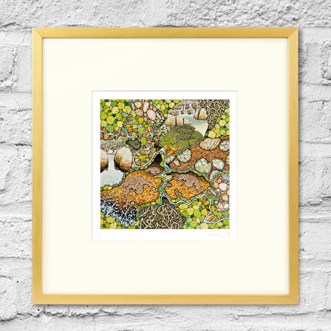 Image of Davies Creek Study - Framed Print